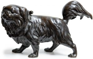Japanese Bronze Pekinese Dog