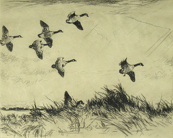 Frank Benson - Geese Over the Marsh